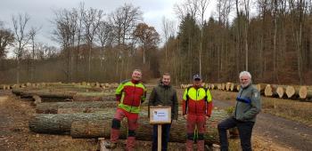 Freuen sich über das beeindruckende Angebot an Wertholz, von links: Forsttechniker Thomas Helmschrott, Bürgermeister Stefan Rottmann, Roland Braun vom Forstbetrieb Schonungen und Revierförster Rainer Seufert.