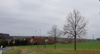 Hier könnte schon bald das neue Baugebiet von Waldsachsen entstehen