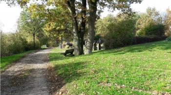 Hier im nordöstlichen Bereich des Schonunger Bergfriedhofs unter drei markanten Eichenstämmen sollen die ersten Baumbestattungen erfolgen.
