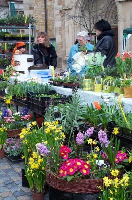 Frühlingsmarkt in Gerolzhofen (Beate Glotzmann).jpg