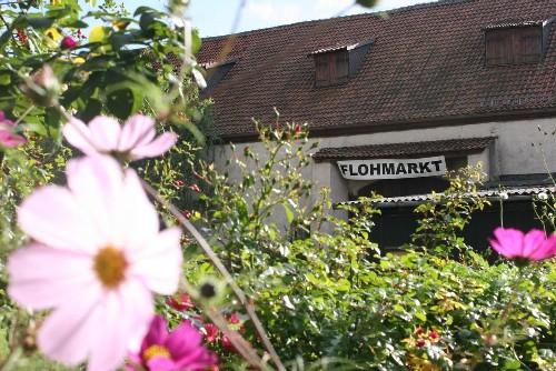 Kaltenhof Flohmarkt web.jpg