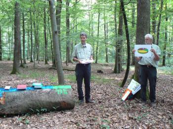 Großgemeinde unternimmt Exkursion in die Waldabteilungen