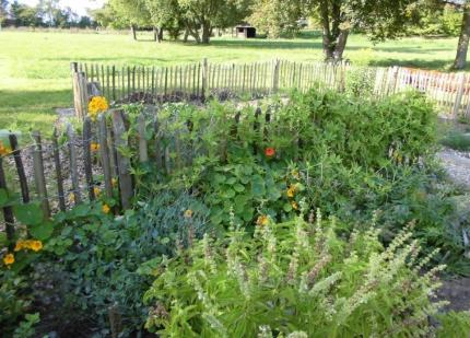Kräutergarten und Allee - Rita Popp (2).jpg